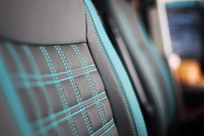 Upholstery Leather 38